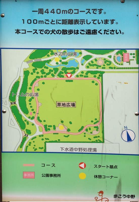 の 公園 平和 森