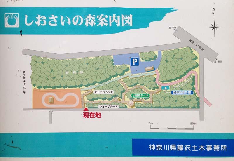 https://sportsone.jp/running/course/wp-content/uploads/2015/10/00.jpg