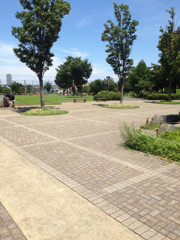 中野 区 ランニング コース